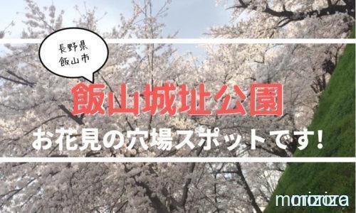 飯山城址公園は桜の名所!花見・夜桜の穴場スポットです!